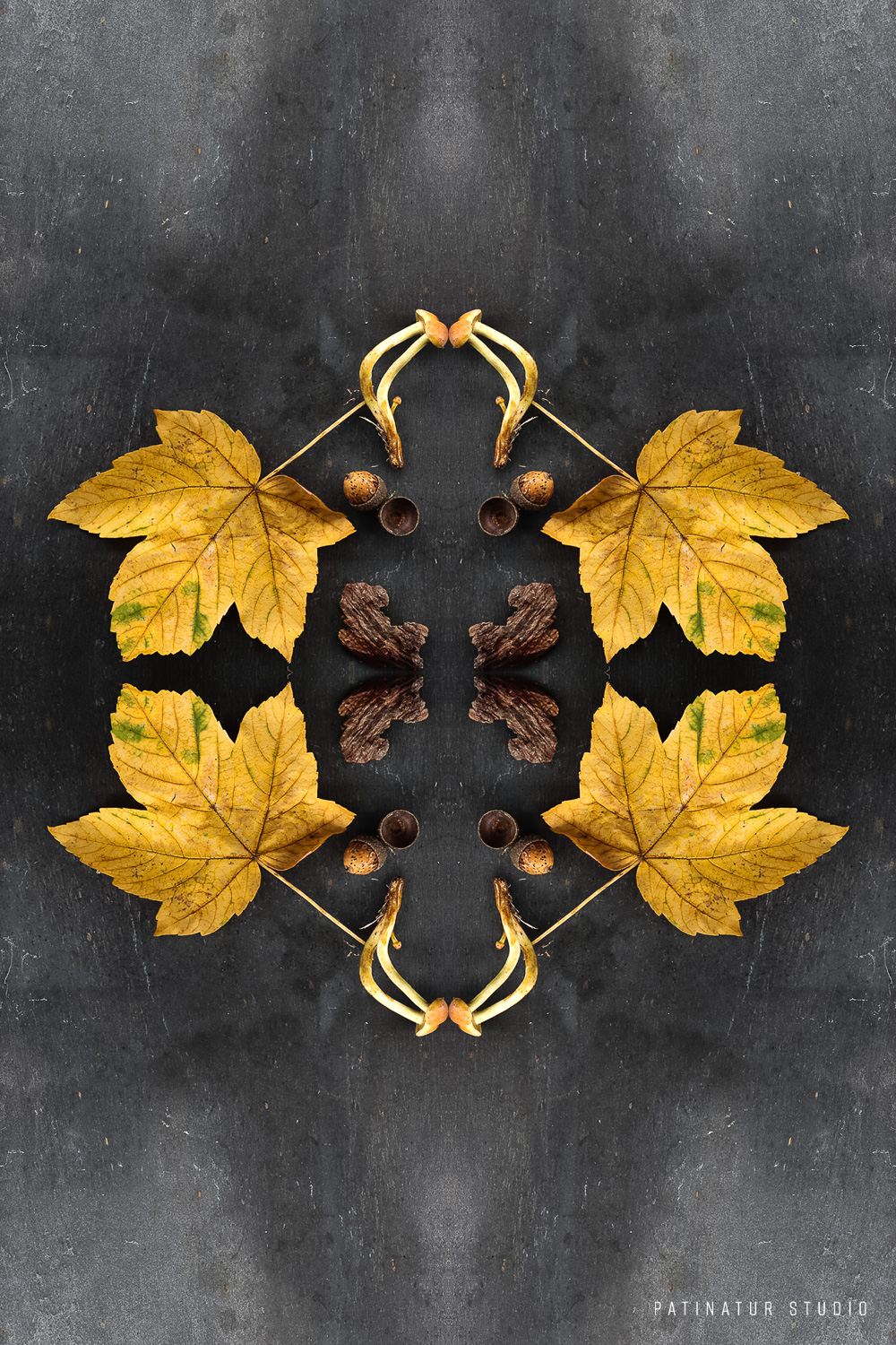 Photo art | Botanical caleidoscope in yellow and brown