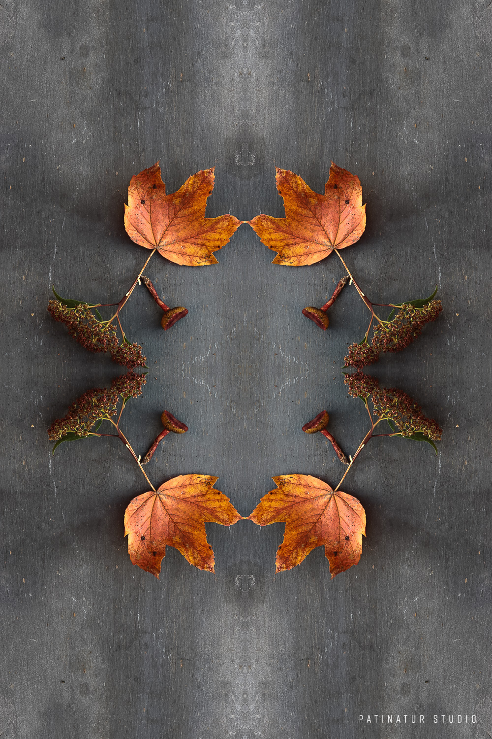 Photo art | Botanical caleidoscope in orange and brown