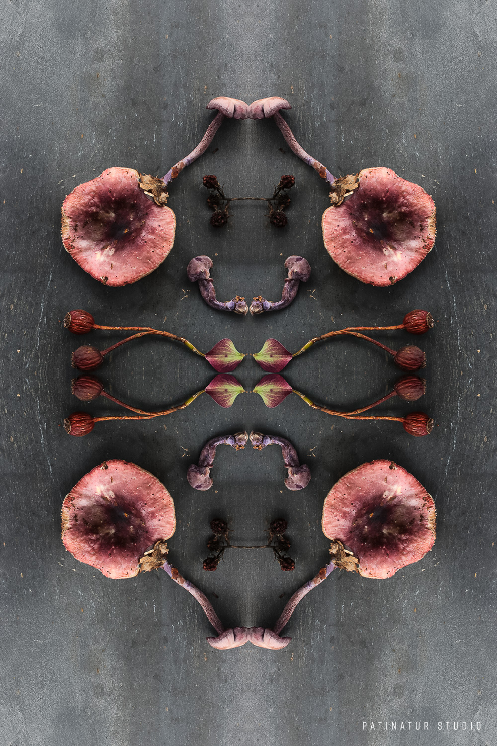 Photo art | Botanical caleidoscope in pink and purple