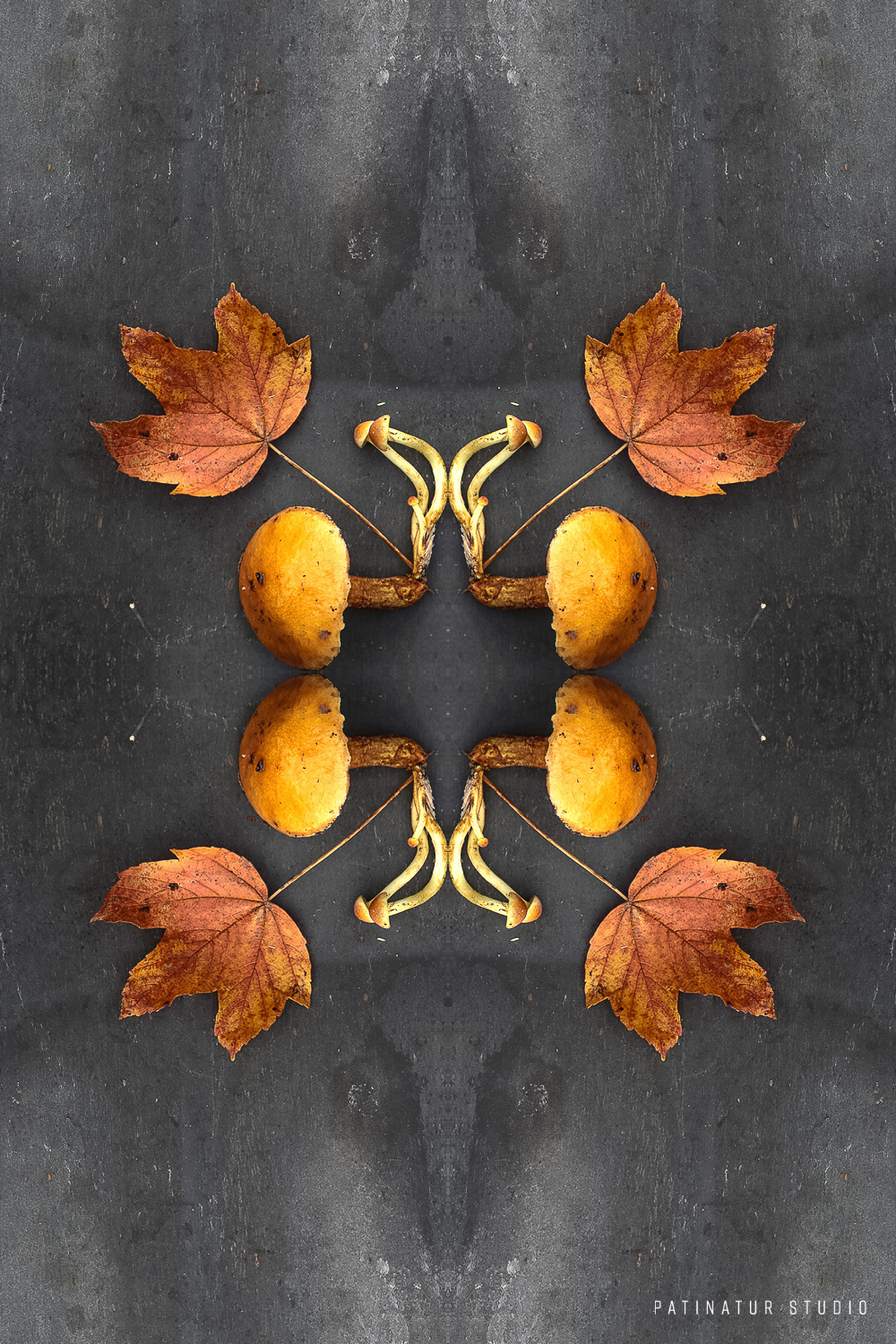 Photo art | Botanical caleidoscope in yellow and orange