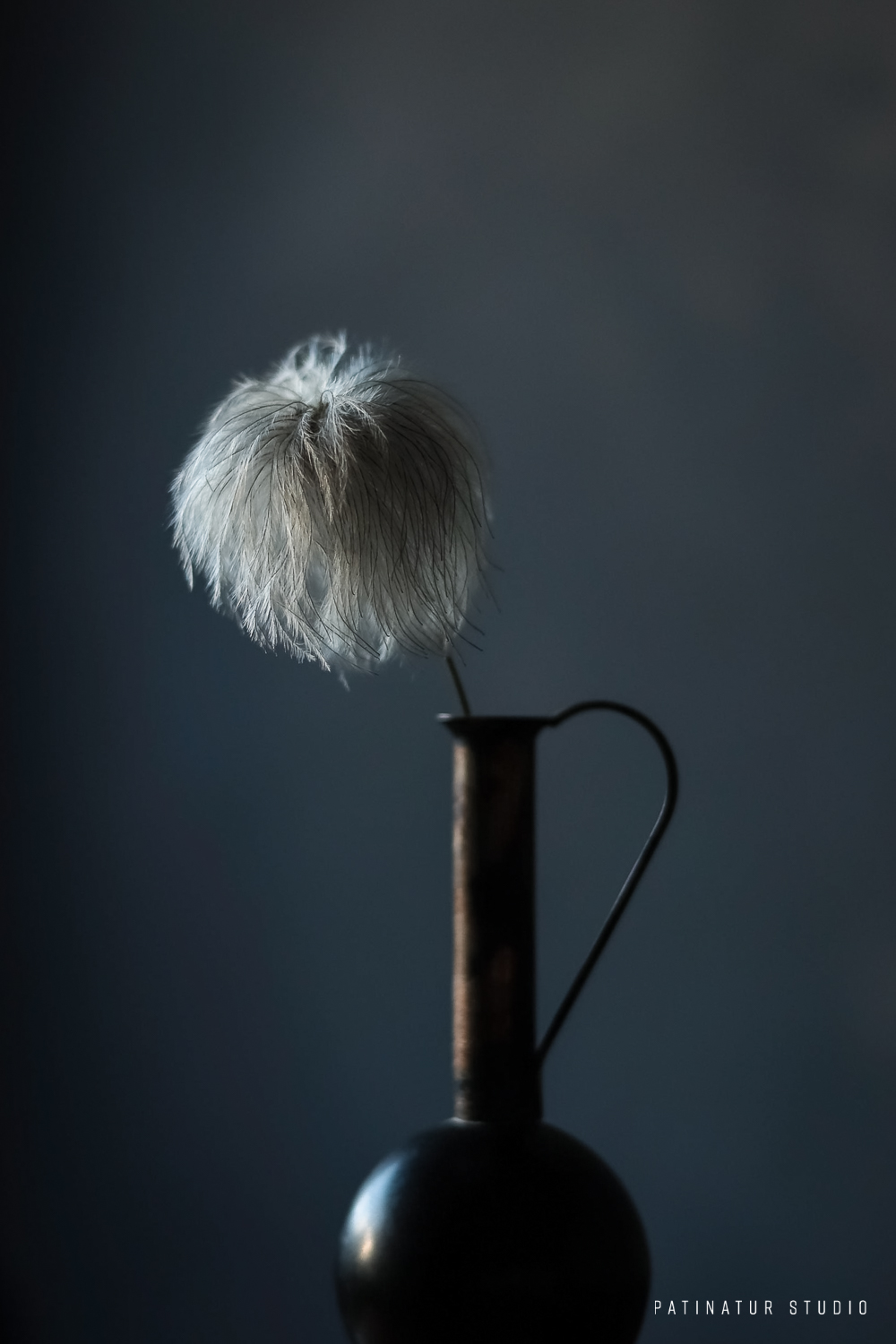 Dark and mooddy still life photo with clematis seedhead in small black vase