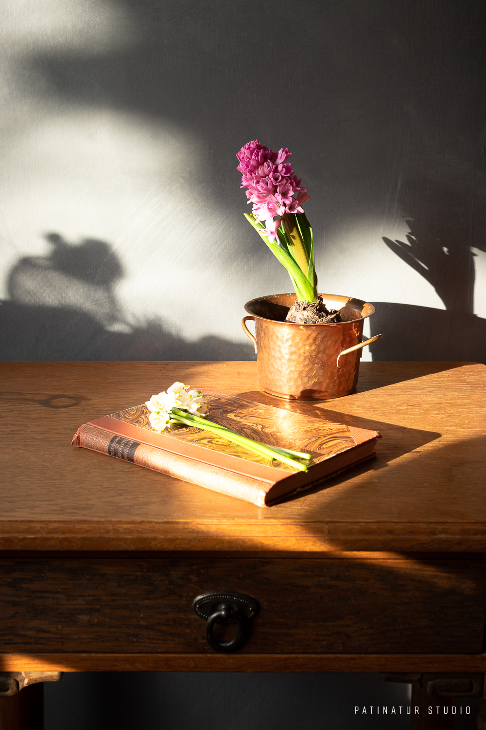 Still life photo with vintage book, spring snowflakes, hyacinth and spring sunlight.