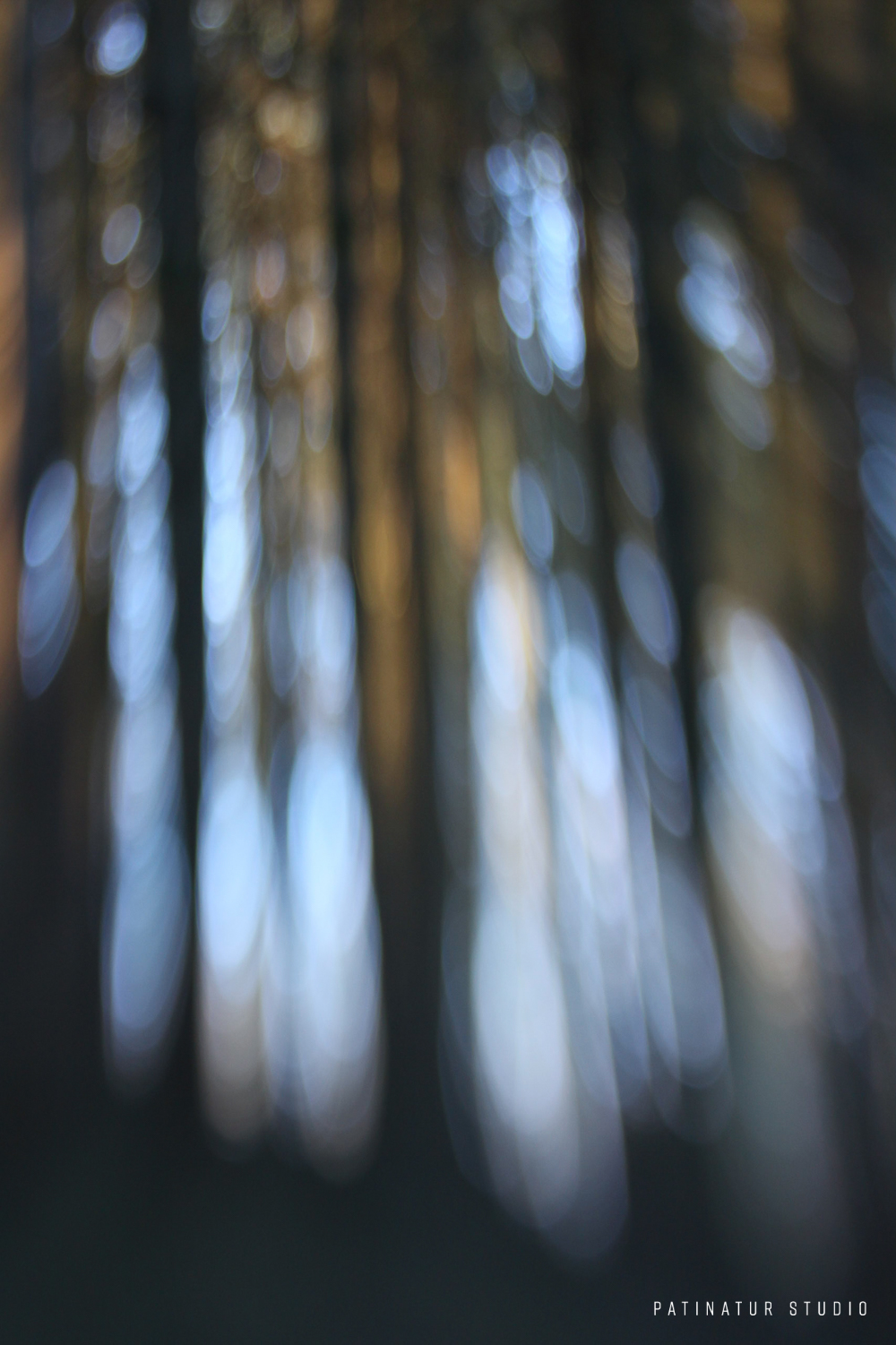 Photo art | Abstract close-up winter forest