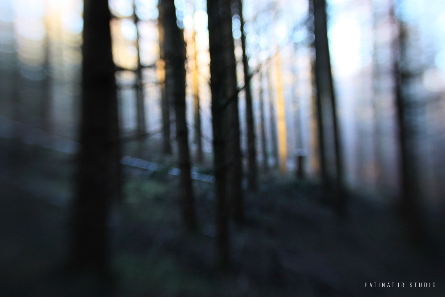 Photo art | Abstract image of Scandinavian winter forest at sunrise.