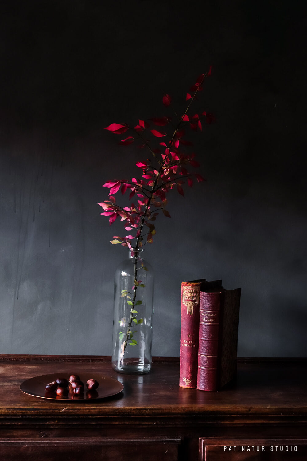 Photo Art | Dark and moody still life with red vintage books, red foliage and chestnuts