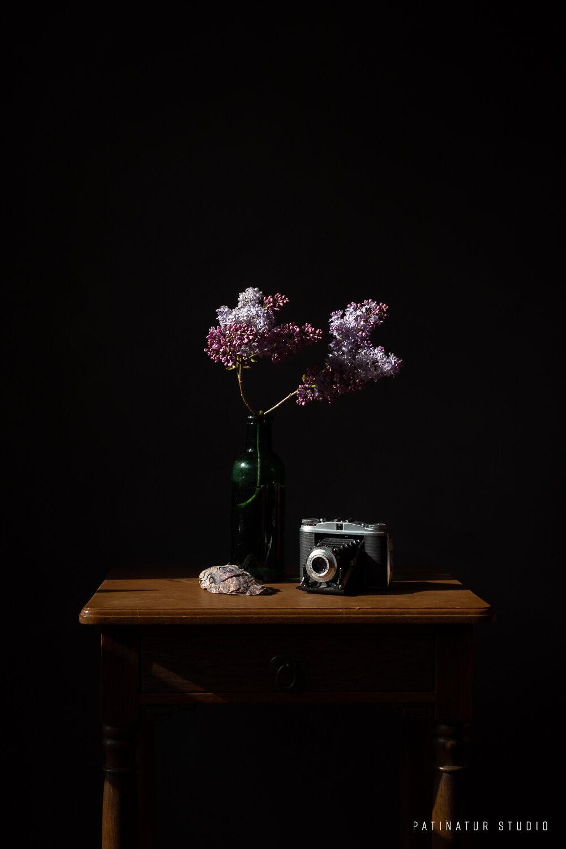 Photo Art | Dark and moody still life with lilacs, seashell and vintage camera