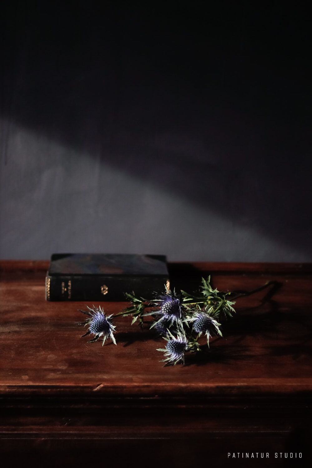 Photo Art | Dark and moody still life with flower and vintage edition of Tolstoy's The Devil