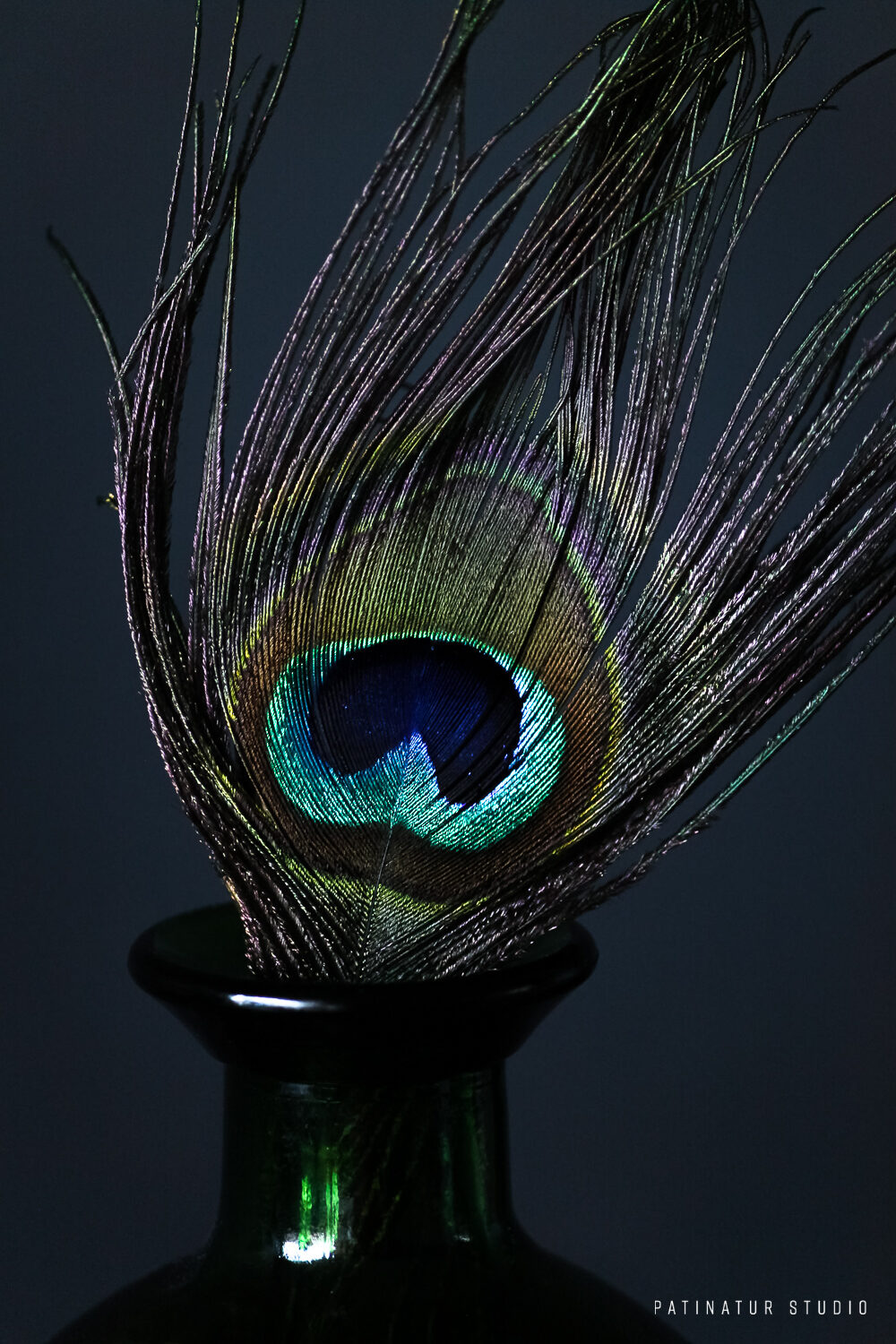 Photo Art | Dark and moody stilll life with peacock feather in green glass bottle